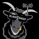 Team Blacksheep 2014 retrospective