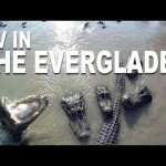 "RCExplorer.se: ""Everglades"""