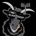 Team Blacksheep 2014 retrospective